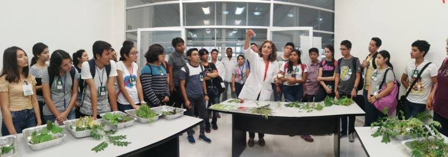 Inauguración Tercera Semana de Ciencia Talento CICY_5